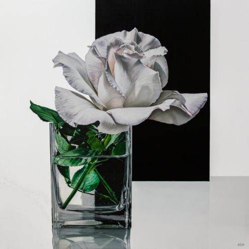 08 - White solitude - 120 x 120 cm