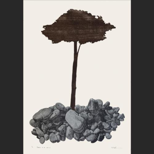 Piedras en el camino - 80 x 57 - 90 x 63 cm