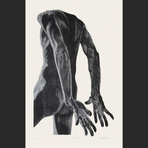 El nadador - 78 x 50 - 92 x 60 cm